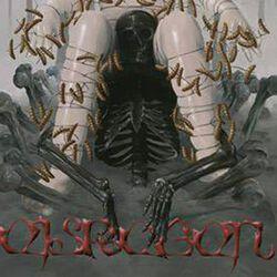 Knochenkult