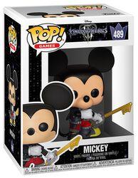 3 - Mickey Vinyl Figure 489